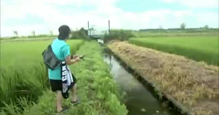 霞ヶ浦南水路のさらに支流