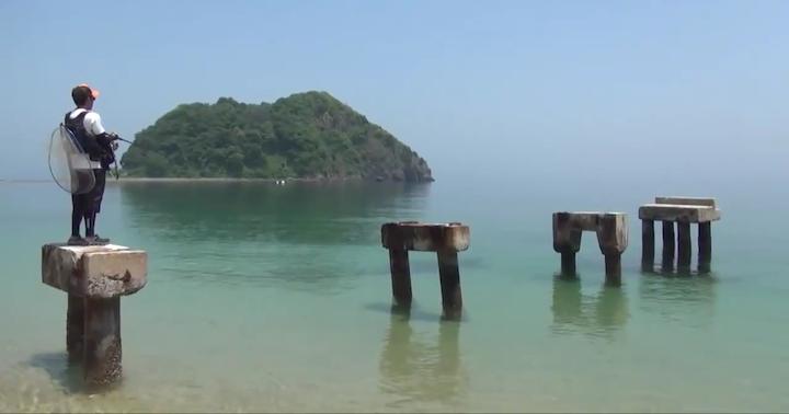 岩国市の桂島の絶景釣りスポット
