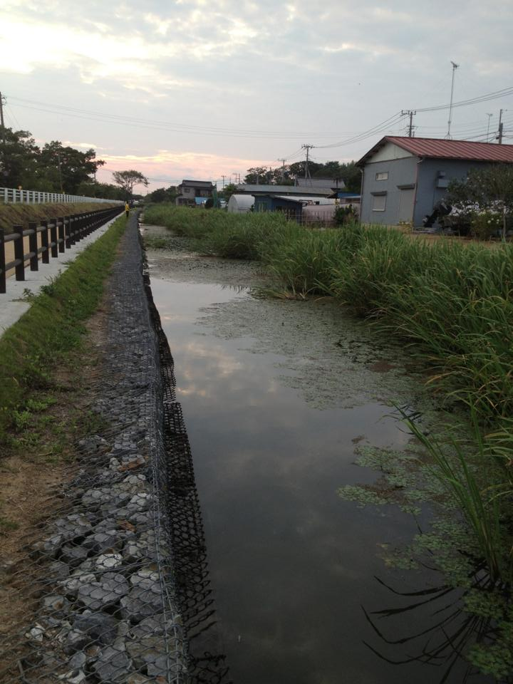 霞ヶ浦西の洲北水路1