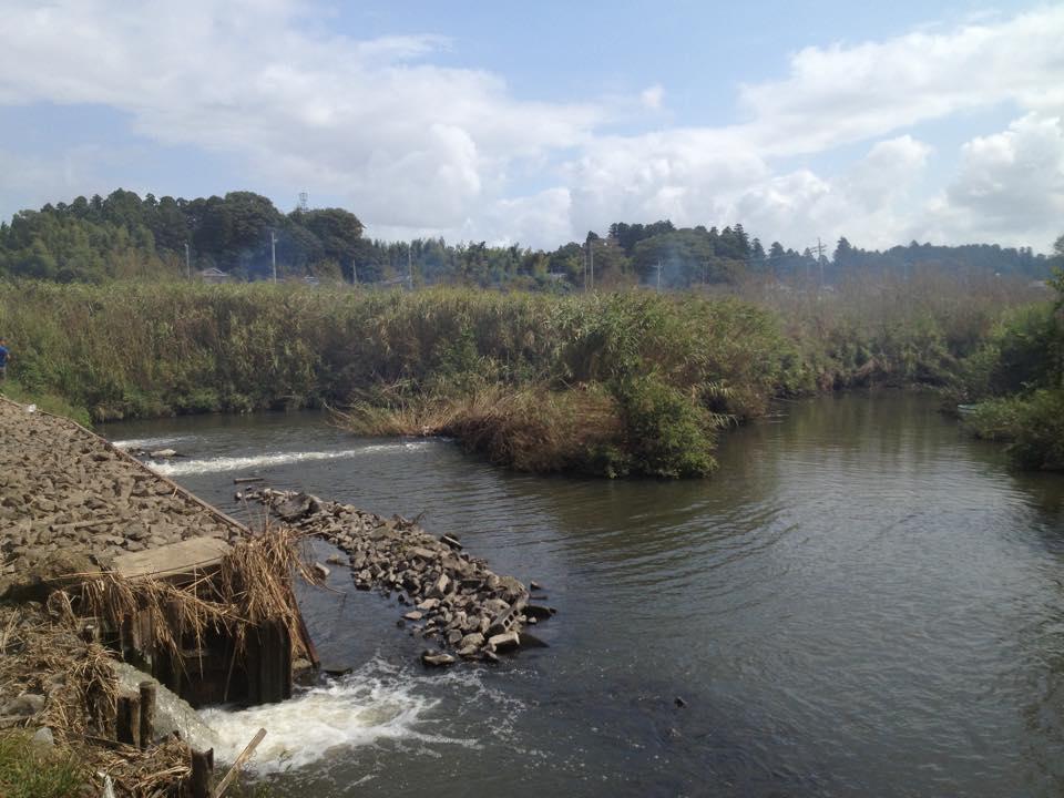 小野川上流の堰があるエリア