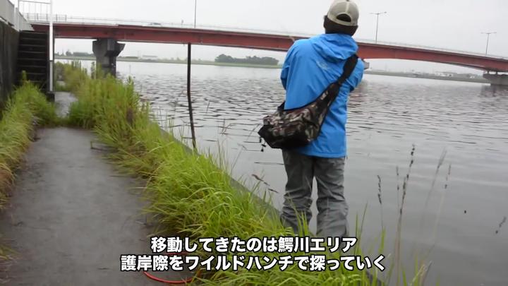 鰐川大橋付近