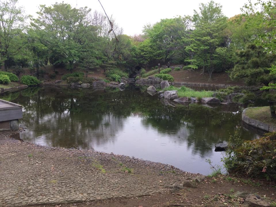 ザリガニが潜む池
