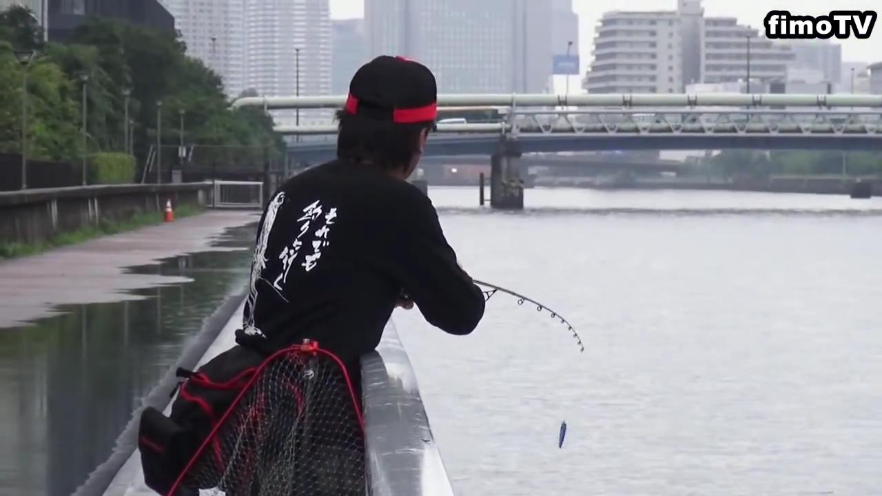 豊洲運河でシーバス釣りをする村岡昌憲プロ