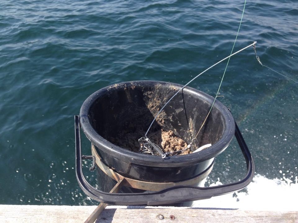 アジ釣りのコマセ