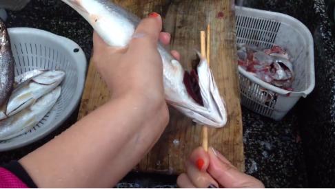 cleanfish-4