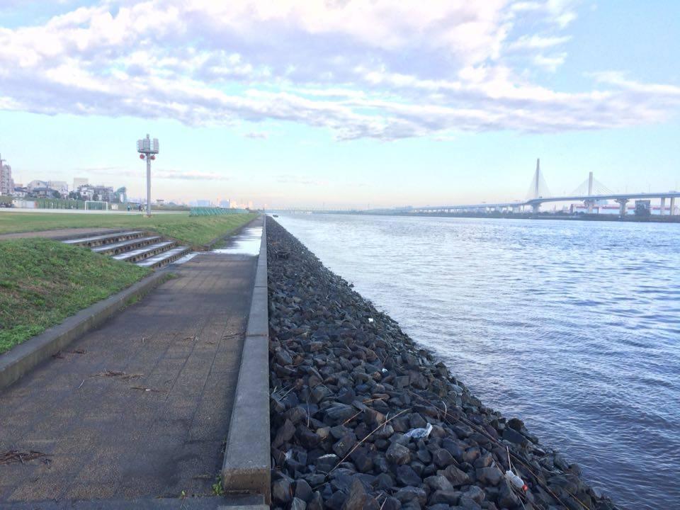 平井大橋から上流に行くとゴロタが入っています