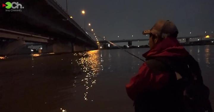 小松川大橋の明暗部