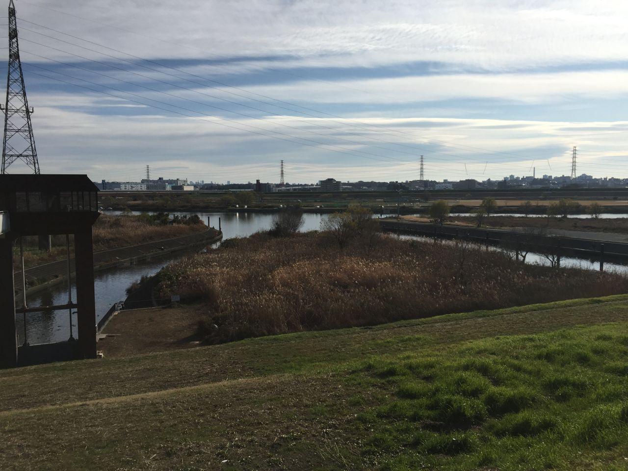 荒川 戸田の温排水ポイントの全景
