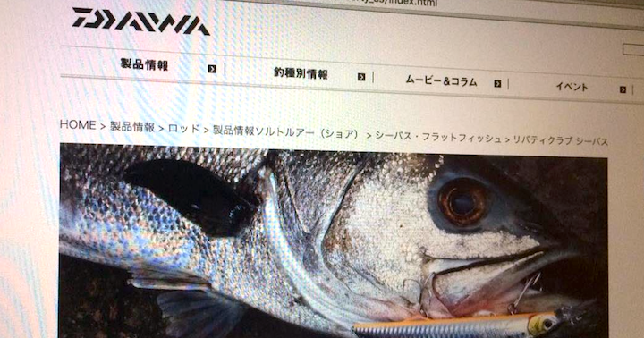 daiwa-beginner-ec