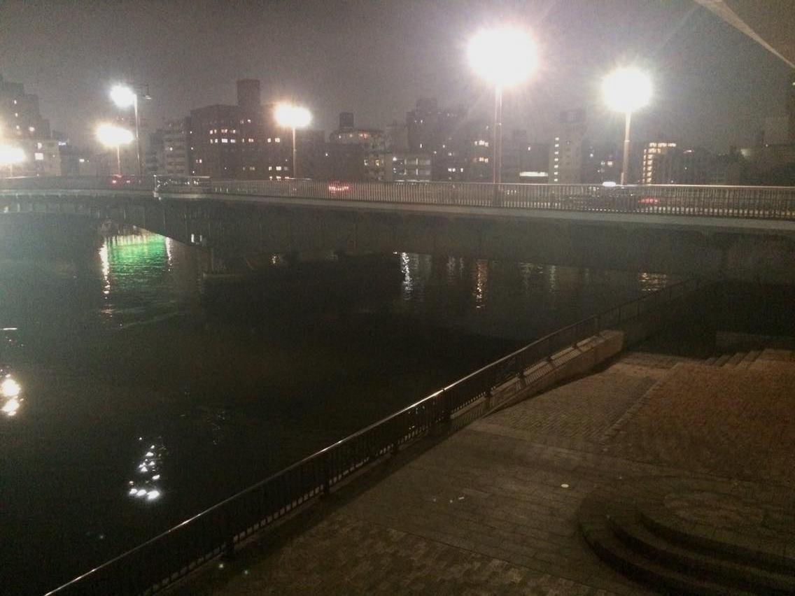 両国橋を堤防入り口から望む