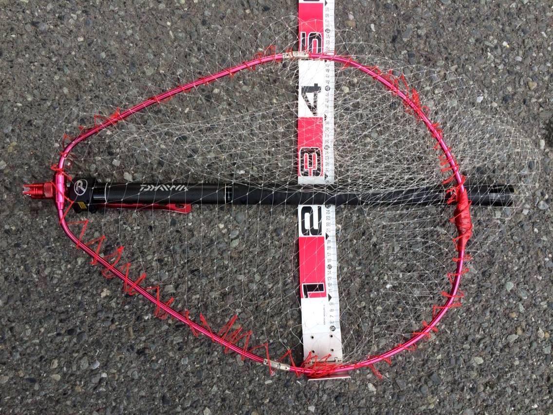 タモ網のサイズ