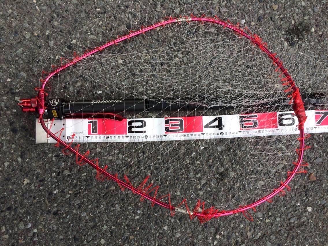 タモ網の大きさ