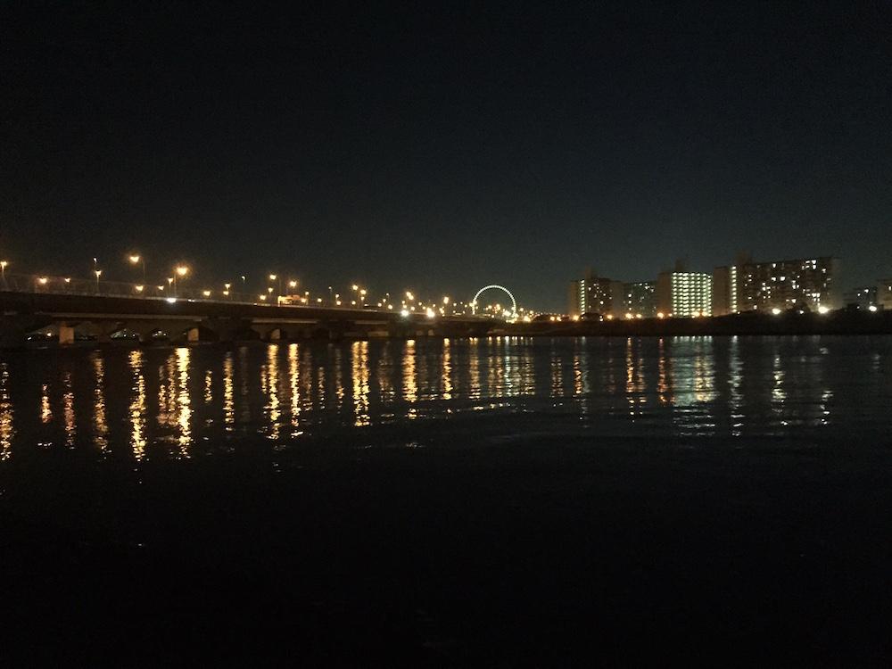旧江戸川河口(舞浜側)