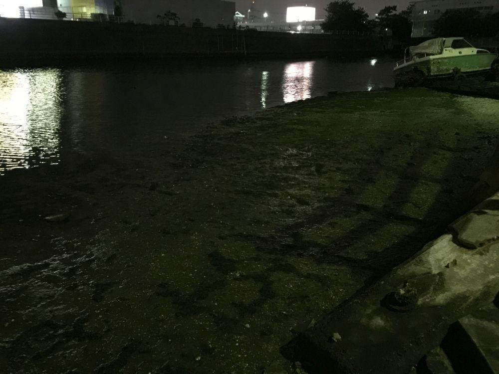 urayasu-sakaigawa-9