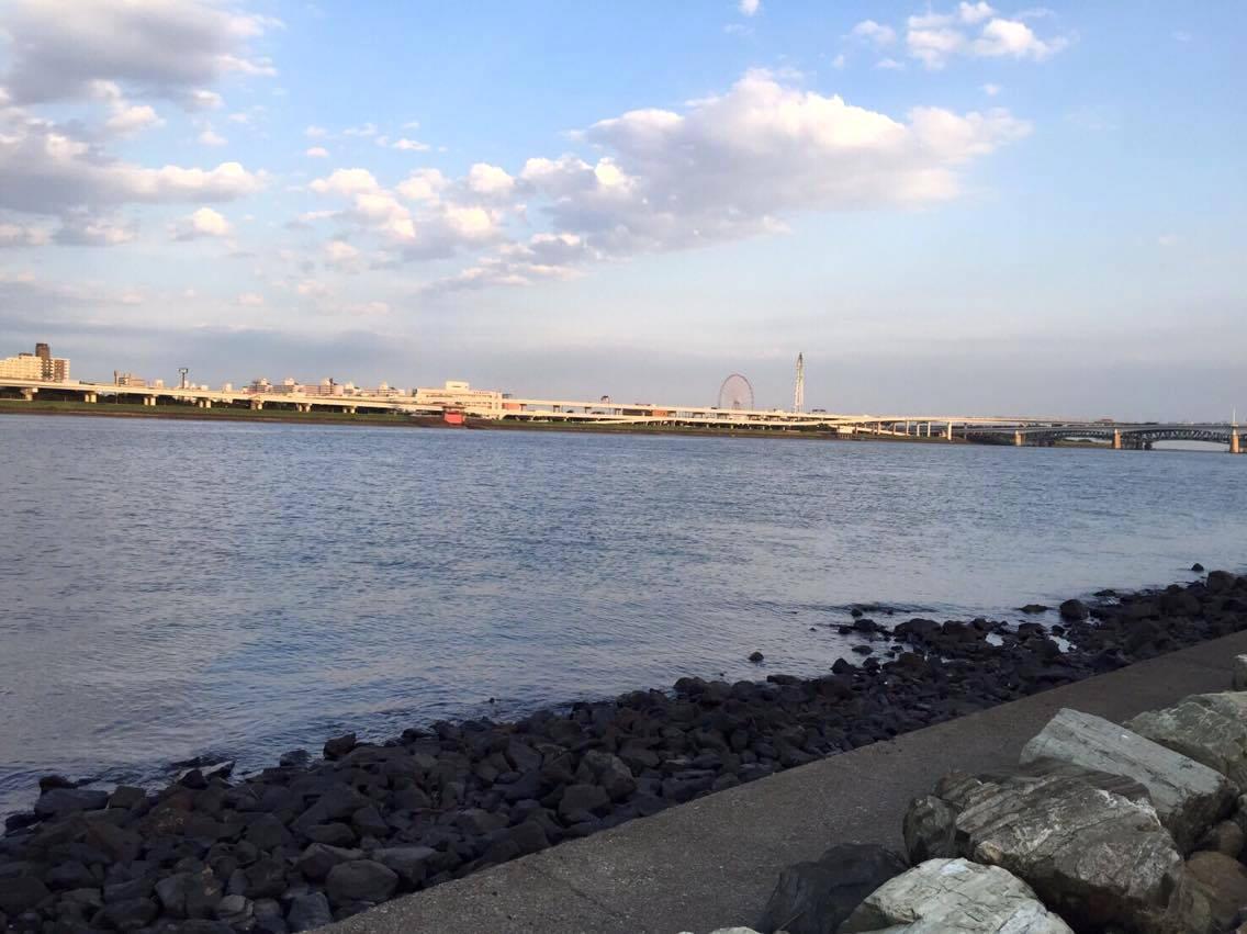 荒川河口のポイント