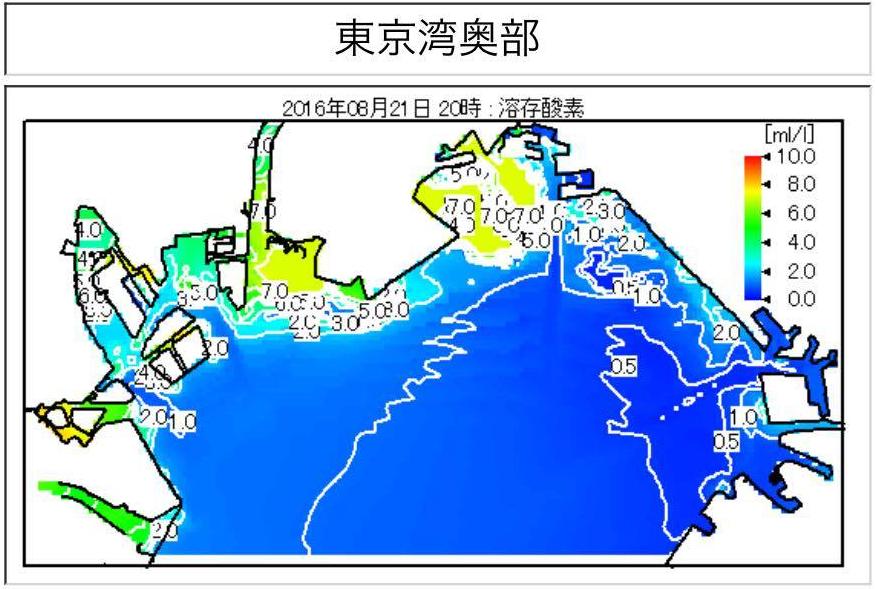 東京湾奥の溶存酸素量も分かります