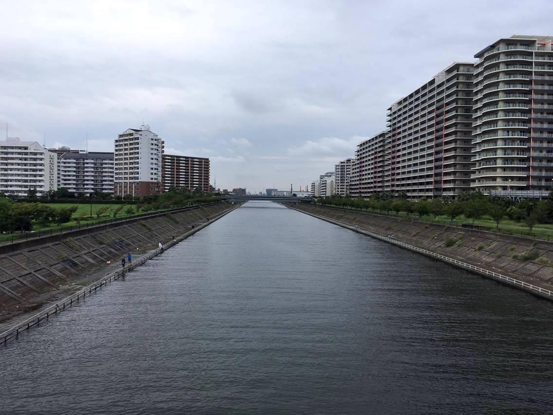 東京湾奥シーバス釣りポイント紹介〜新浦安の境川 | SAKANA Magazine